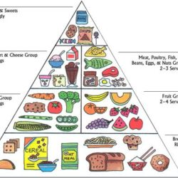 fonte: https://www.dealwithautism.com/forum/media/a-balanced-food-pyramid-for-autism.209/